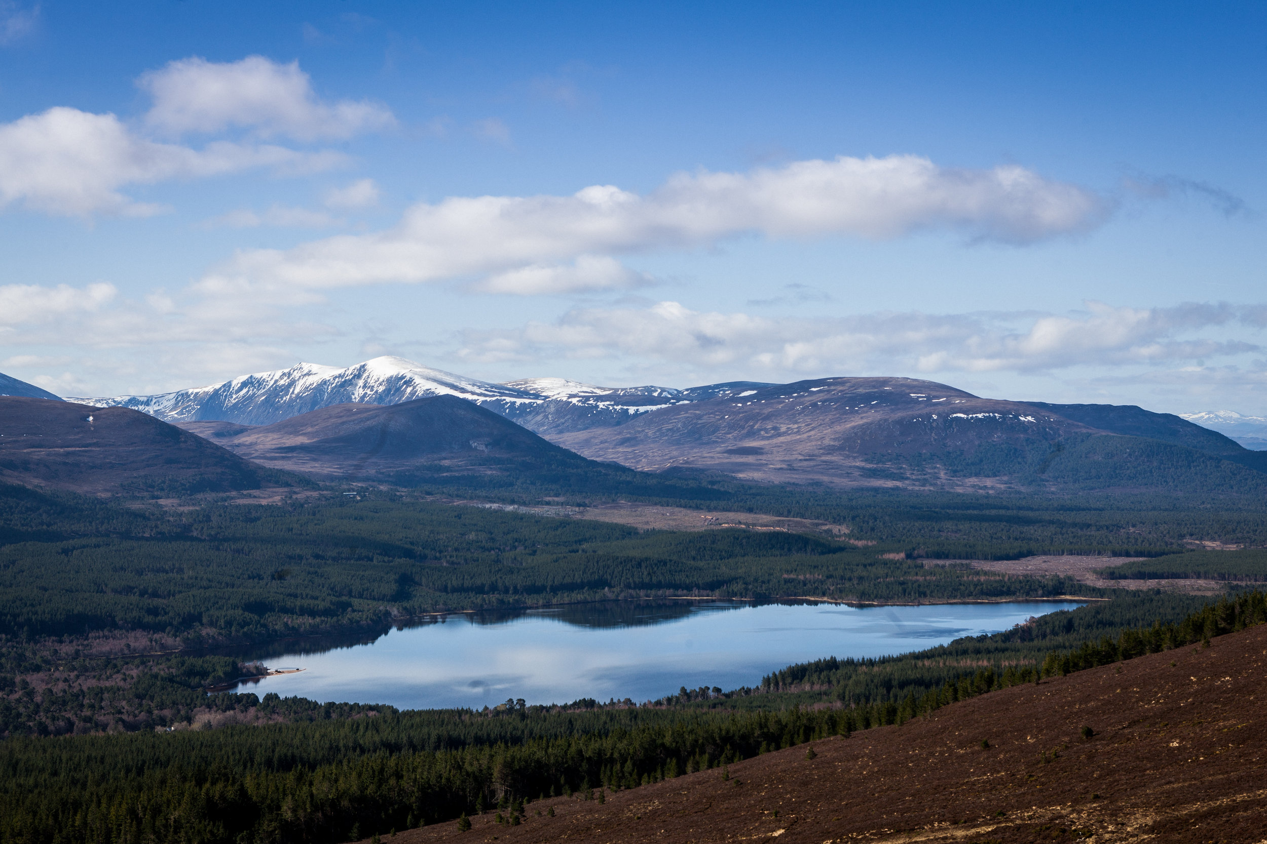 03-29-2019_Lochran-and-Light-436.jpg