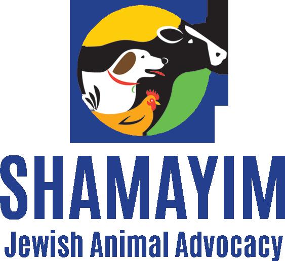 ShamayimLogosquare (3).png