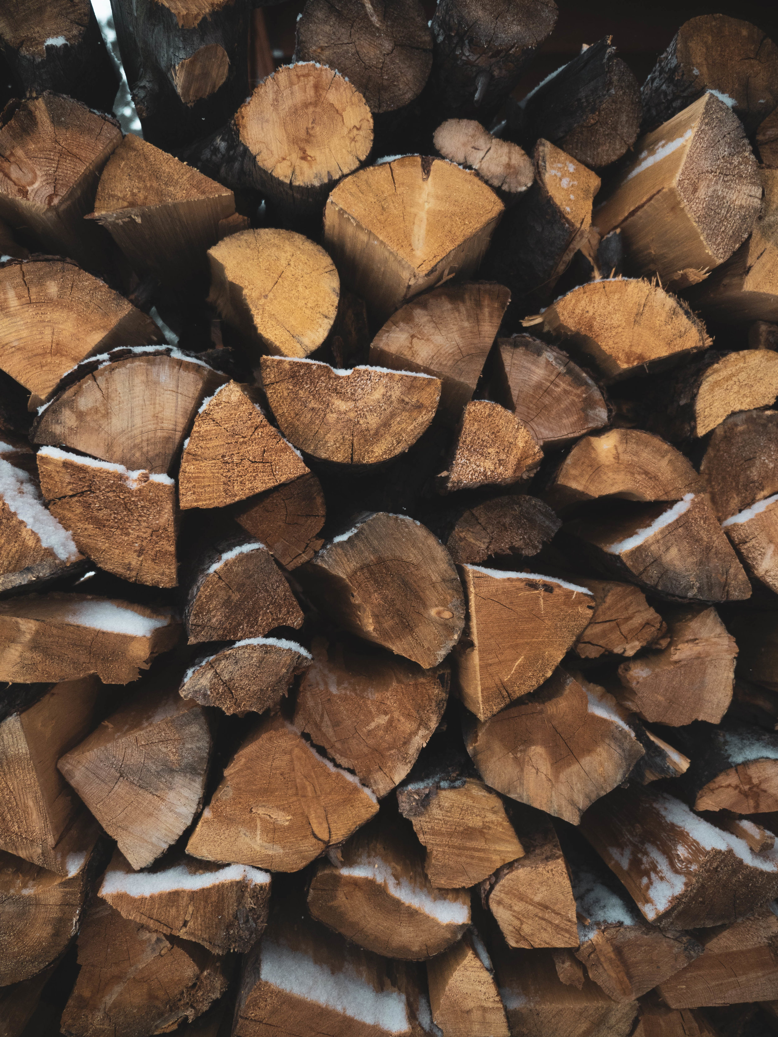WOOD BUNDLES& FIRE LOGS - Available for purchase on site