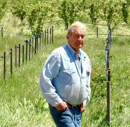 Bob-vineyards-new-test1.jpg