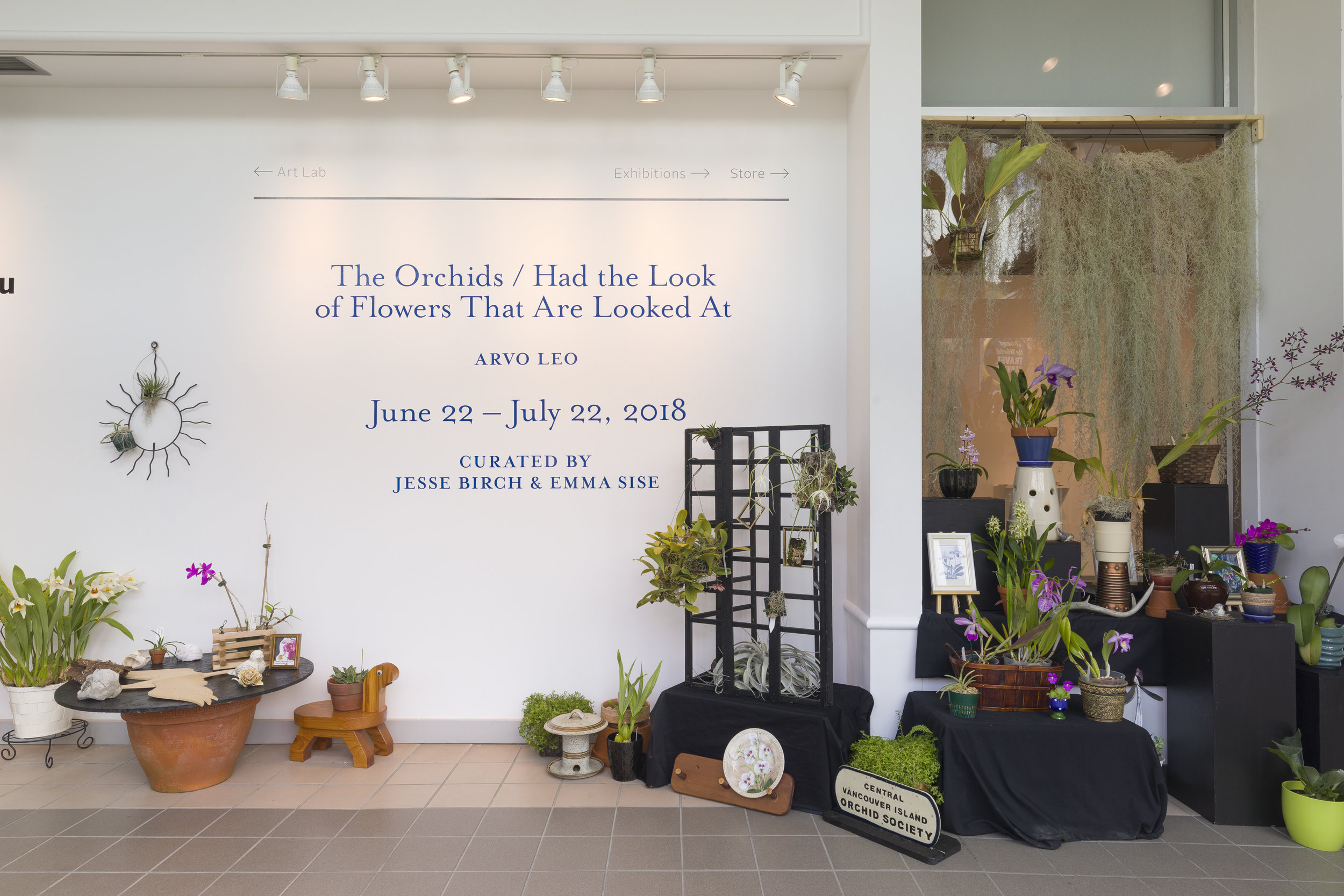 orchid display created by the   Central Vancouver Island Orchid Society