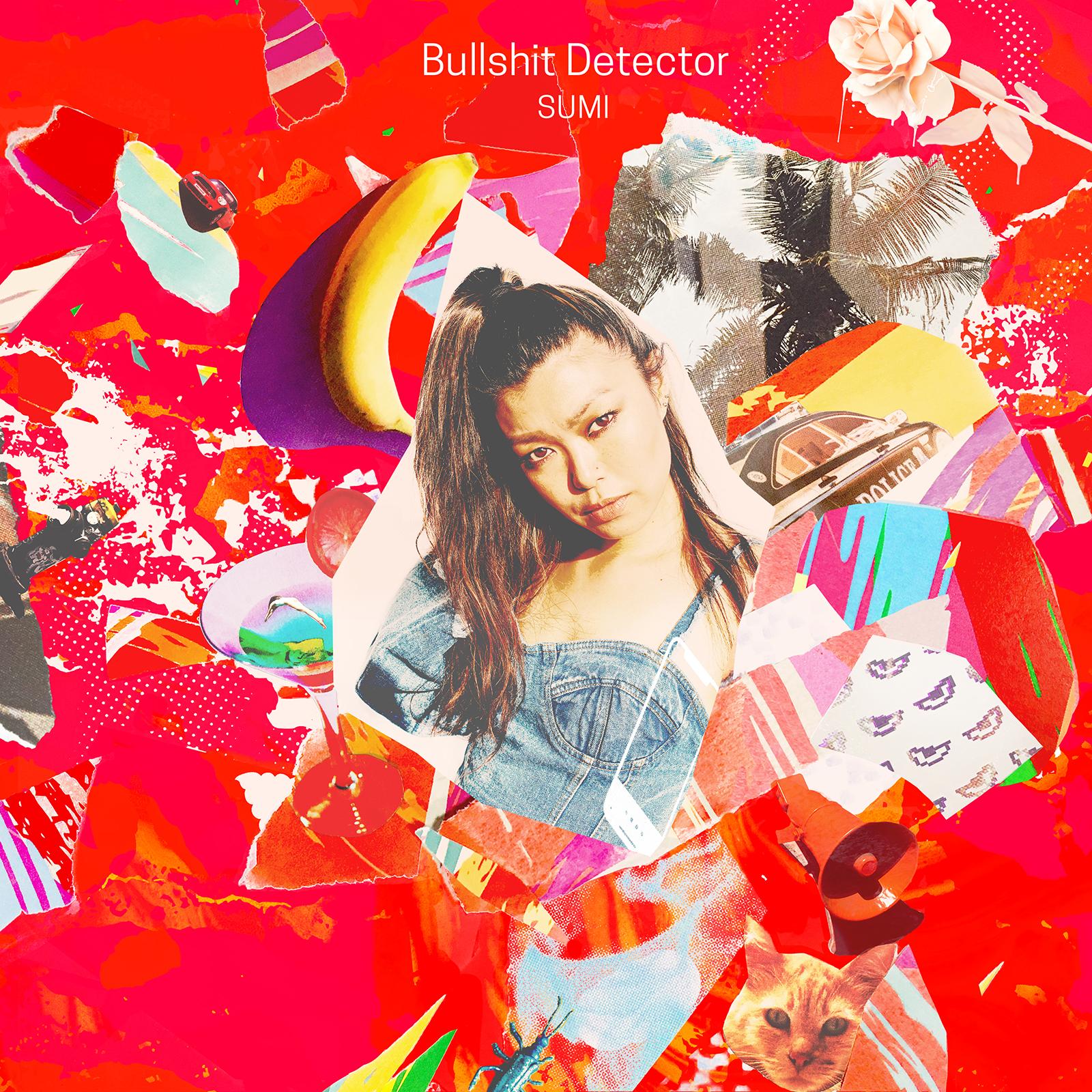 Cover_Bullshit Detector_Sumi_Red.jpg