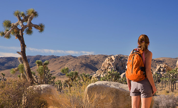 CALIFORNIA- PALM SPRINGS & JOSHUA TREE WALKING & HIKING TOUR.jpg