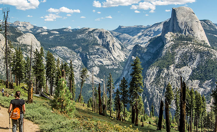 YOSEMITE WALKING & HIKING TOUR.jpg