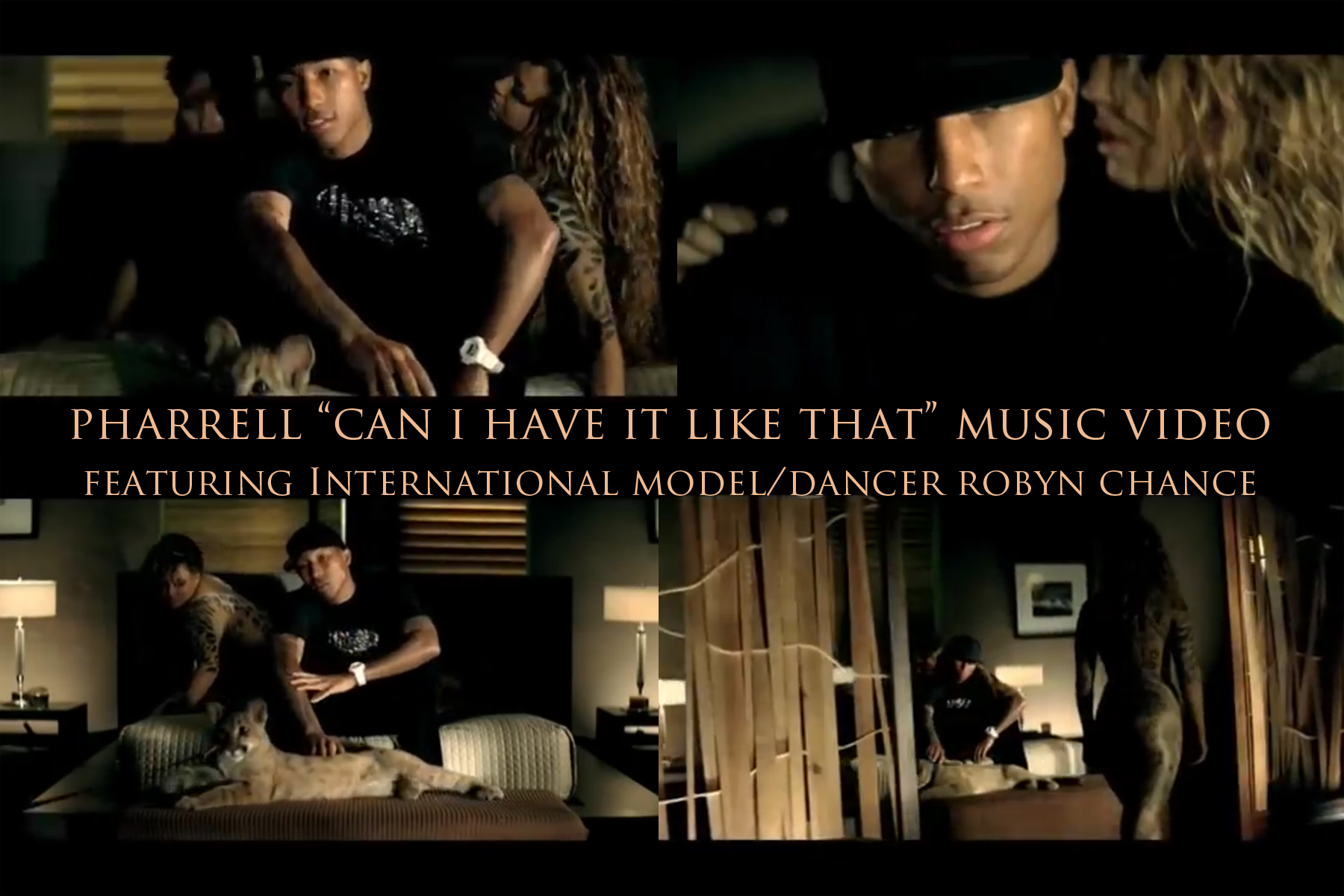 Pharrell_MusicVideoCollage_RobynChance (1).jpg
