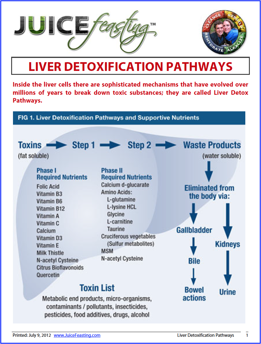 Liver Detoxification Pathways - by David Rainoshek, M.A.Inside the liver cells there are sophisticated mechanisms that have evolved over millions of years to break down toxic substances; they are called Liver Detox Pathways. Knowing how to support your Liver Detoxification Pathways is a key to health and longevity, and RIGHT NOW will give you a lot of insight into the role of your Liver in the detoxification aspect of Juice Feasting. This information will also clue you into the importance of the next file: Glutathione.