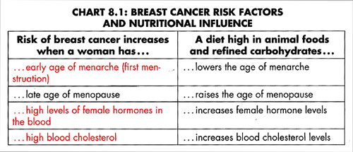 Breast-Cancer-Risk-Factors.jpg