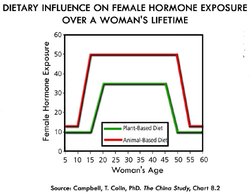 Hormone-Exposure-Animal-vs-Plant-Based-Diet-2.jpg