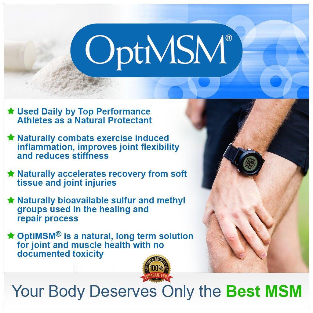 MSM 6.jpg