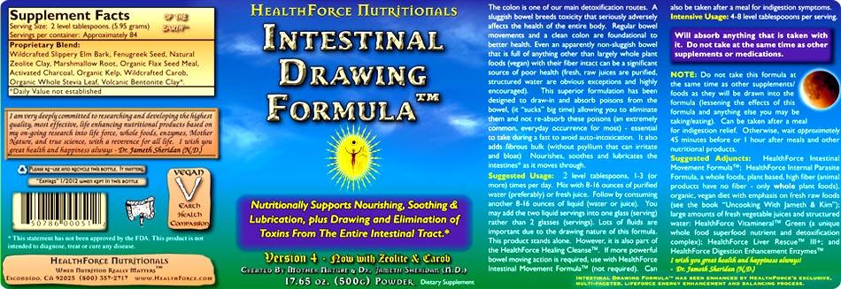 Intestinal-Drawing2.jpg