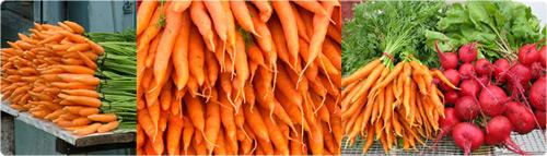 carrotbeetweb.jpg