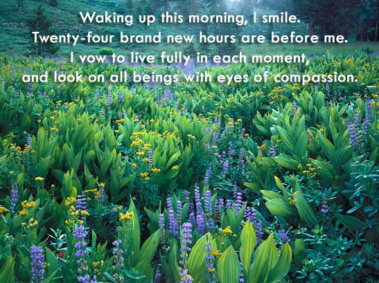 Waking-Up-This-Morning.jpg