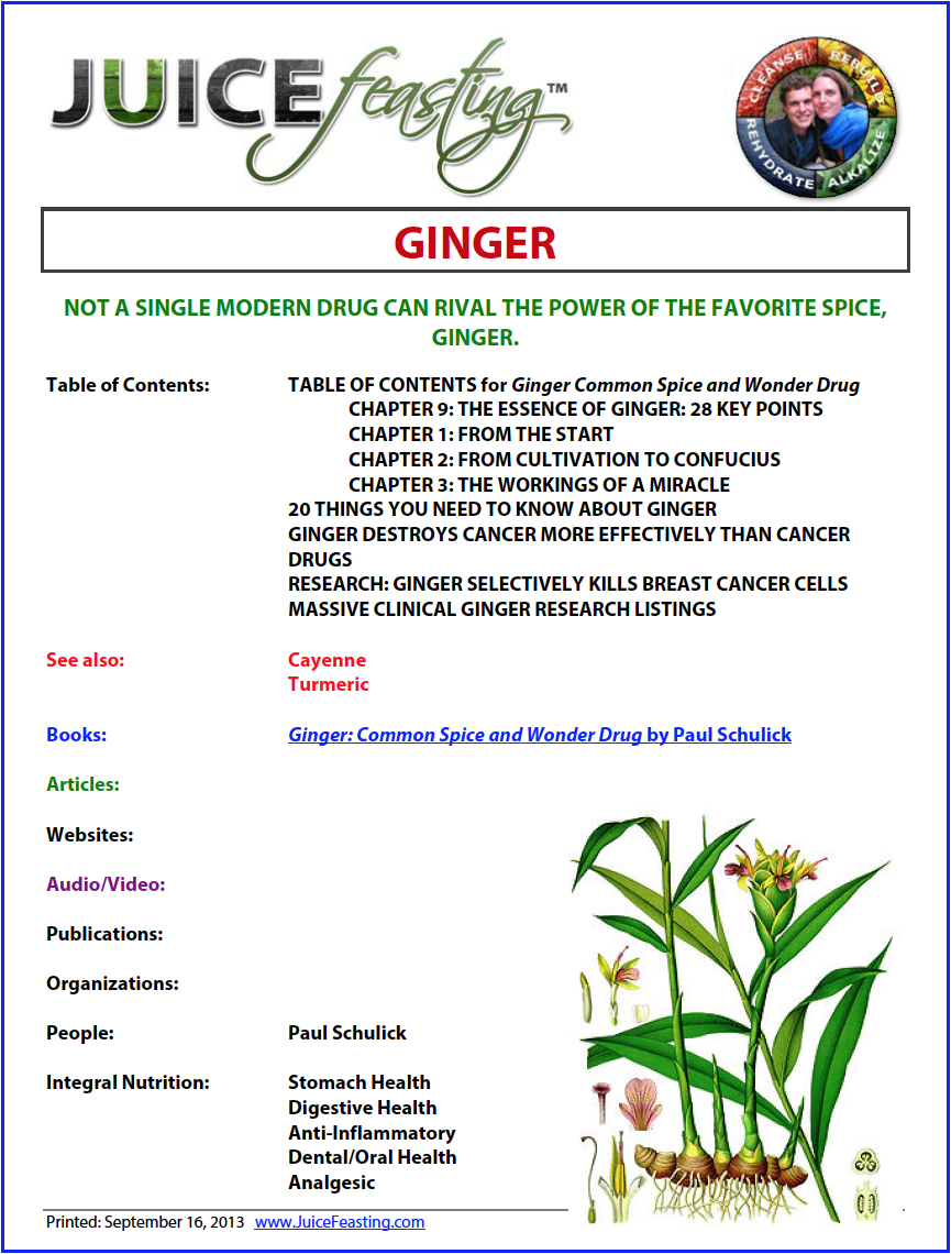 Ginger Cover.png