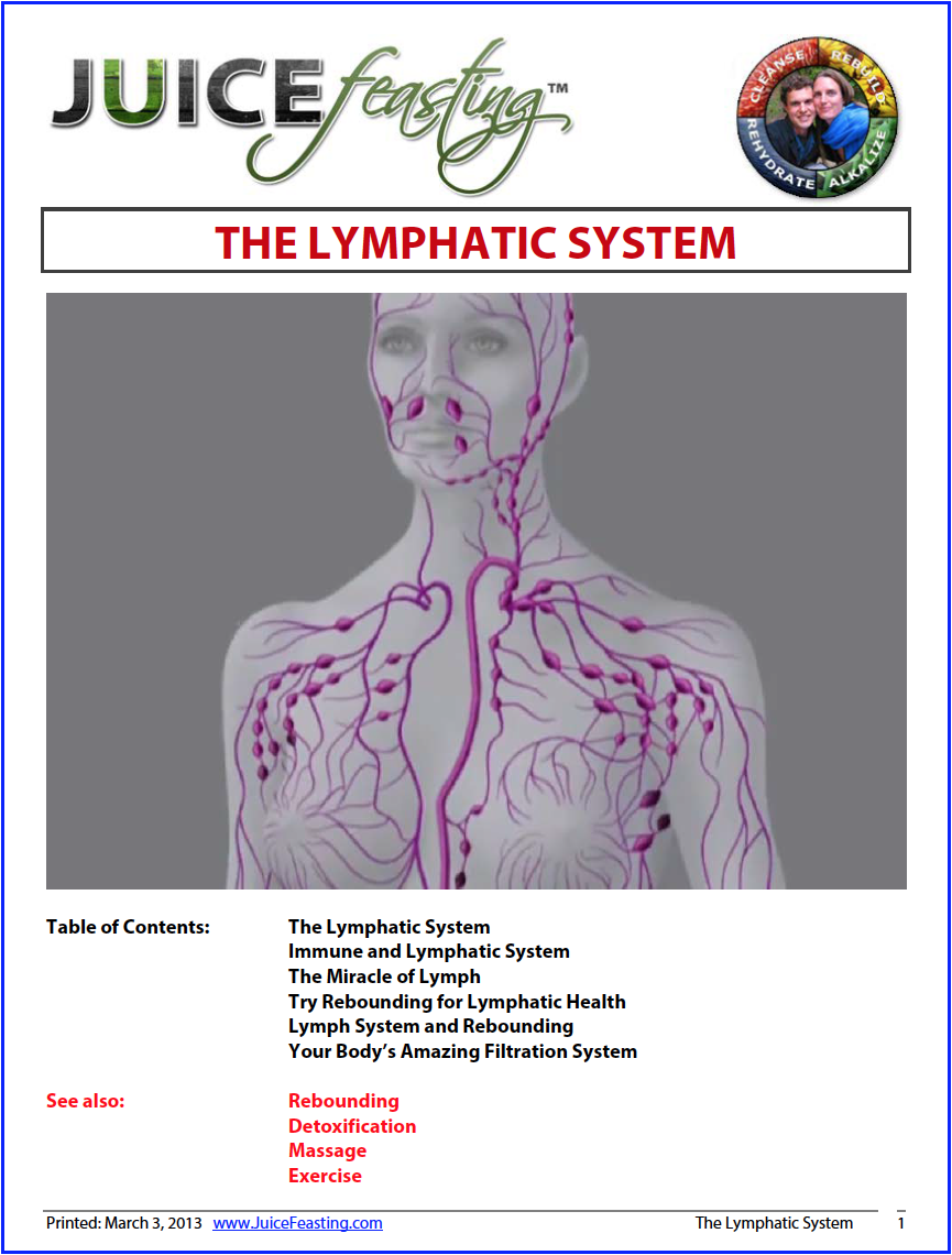 the lymphatic system - by David Rainoshek, M.A.Perhaps the most forgotten, under studied and least understood system in the body is the Lymphatic System. The lymph travels with the nerves, arteries and veins and is by itself twice as big as the arterial blood supply system – and maybe twice as important. The Lymphatic System removes waste and from every cell in your body while regulating the immune system. Enjoy a deeper understanding – and better health – for having this information in your awareness!