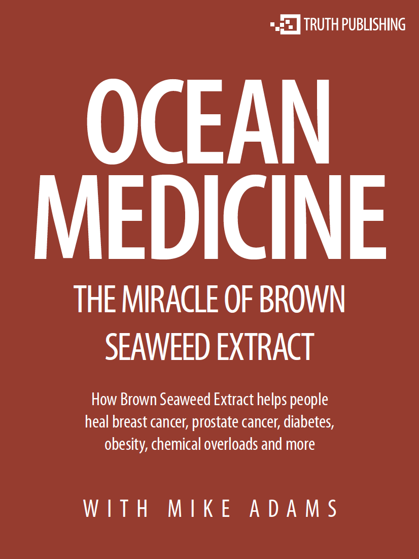 ocean medicine: the miracle of brown seaweed extract - This miraculous Russian herbal extract has remained a coveted secret of anti-cancer docs around the world…Now this NaturalNews exclusive interview reveals the true story behind Brown Seaweed Extract and how it can help halt diabetes, stop cancer tumors and revitalize the human body with nutritional compounds that only grow in the deep blue ocean…There's a little-known medicine that actually grows in the ocean and is harvested by professional divers. It contains extremely potent phytochemicals that have been clinically shown in various research projects around the world to achieve phenomenal health effects: blocking the growth of cancer tumors, regulating blood sugar, nourishing the body's need for ocean minerals, balancing nervous system function and accelerating healing, among other benefits.It's called brown seaweed extract, and in this exclusive NewsTarget report, Mike Adams interviews Sergei Zimin, the founder of Modifilan, who reveals never-before-published details about the harvesting, processing and packaging of this truly amazing medicine provided by Mother Nature.
