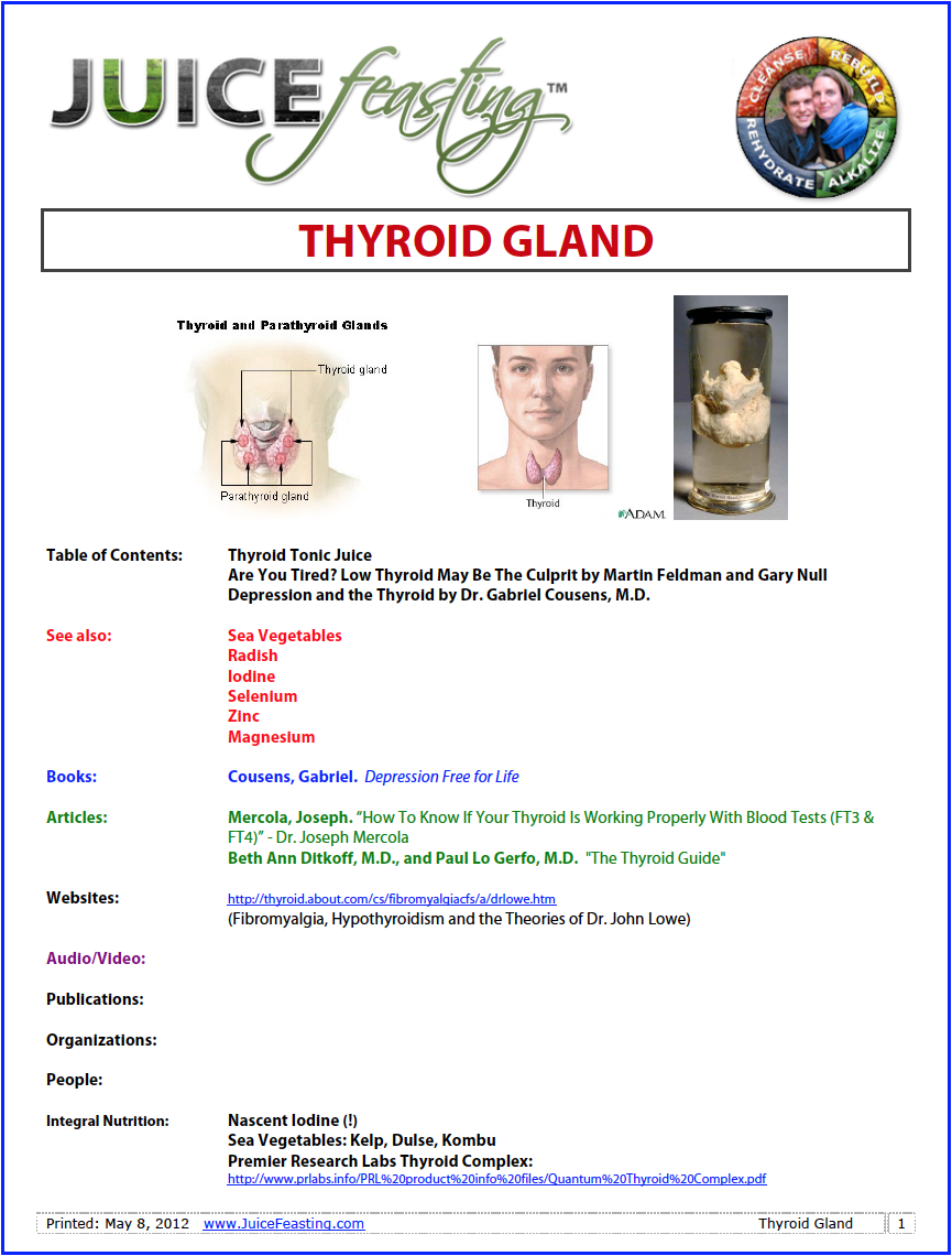 "Thyroid gland - by David Rainoshek, M.A.Low thyroid may be the most commonly misdiagnosed health problem in the United States. Some physicians estimate that as many as one in five Americans may suffer from an unsuspected low thyroid state. In Thyroid Power: Ten Steps to Total Health, Richard Shames, M.D., and Karilee Shames, R.N., Ph.D., call low thyroid a ""large-scale epidemic that has been inadequately addressed."" They note that more than half of people with low-grade hypothyroidism remain undiagnosed at any given time, and that Synthroid, the well-known thyroid hormone medication, became the best-selling prescription drug in 1999.One conventional survey found that approximately 10 percent of the general population and up to 20 percent of older women have mild thyroid failure. And according to doctors on the thyroid service at Harvard Medical School, one out of 12 women under the age of 50 and one out of six by age 60 have the disorder.The source of this hidden health problem is the complex thyroid system. The thyroid gland is a small, butterfly-shaped organ located in the front of the neck, just below your Adam's apple. It secretes about a teaspoon of hormone a year and is responsible for the speed of the body's metabolism. The thyroid affects every organ and cell in the body – from our hair follicles to our toenails – so most body functions become sluggish if it does not work properly."