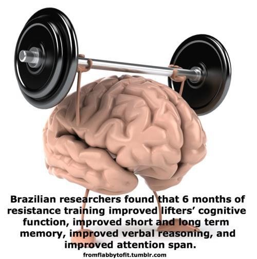 Weight-Training-Cognitive-Function.jpg