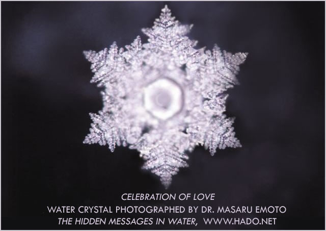 masaru emoto water crystals photograph slideshow - This is a series of scans of Dr. Emoto's beautiful water crystal photography from over the years. Please enjoy these inspiring images!