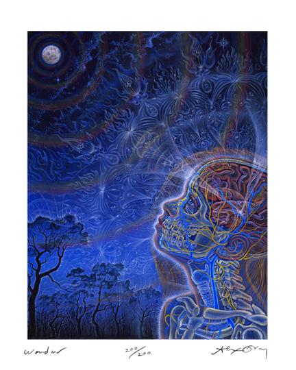 """""""Wonder"""" by Alex Grey. Find more at  www.AlexGrey.com"""