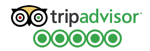 tripadvisor reviews.png