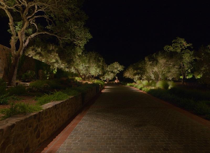long driveway.jpg