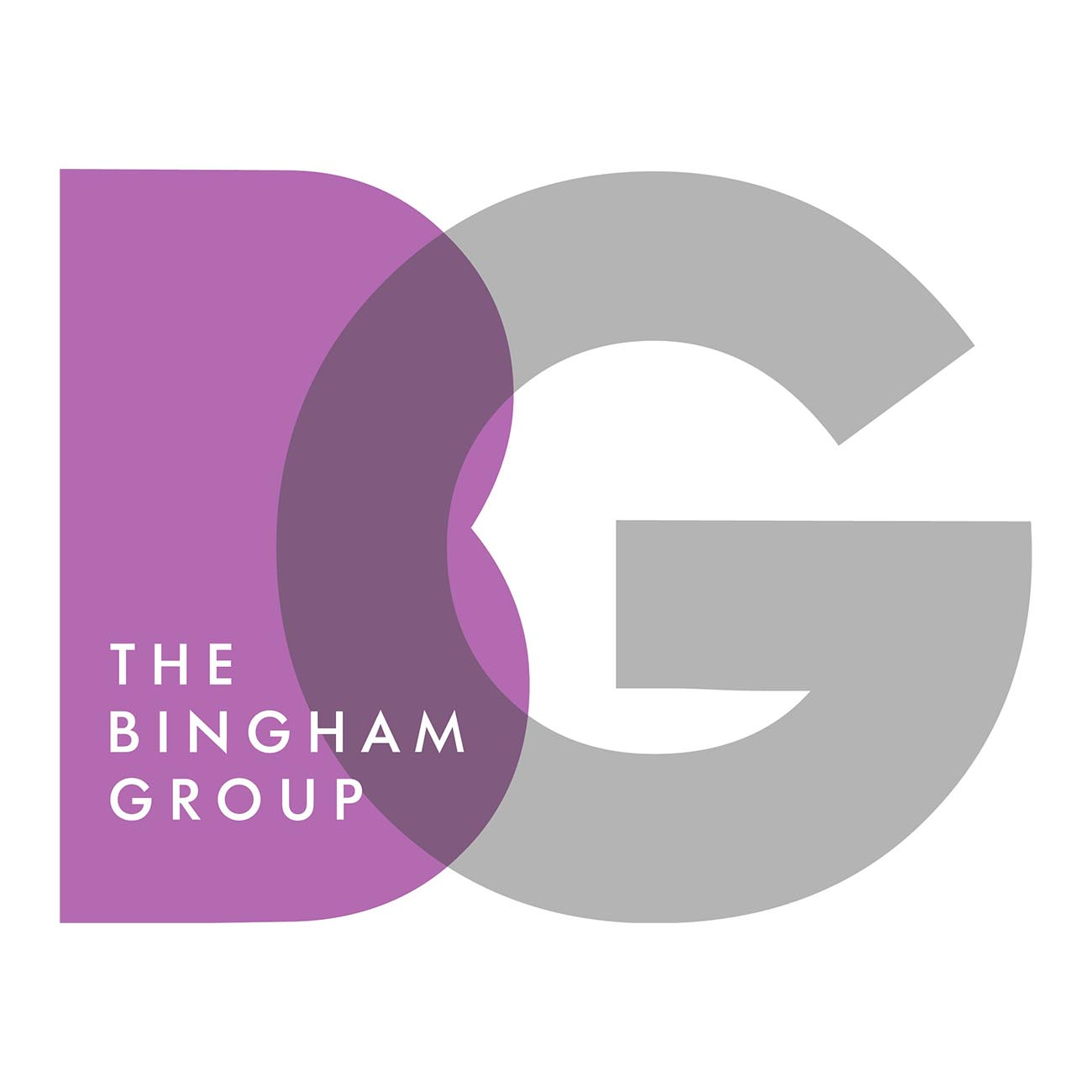 The Bingham Group