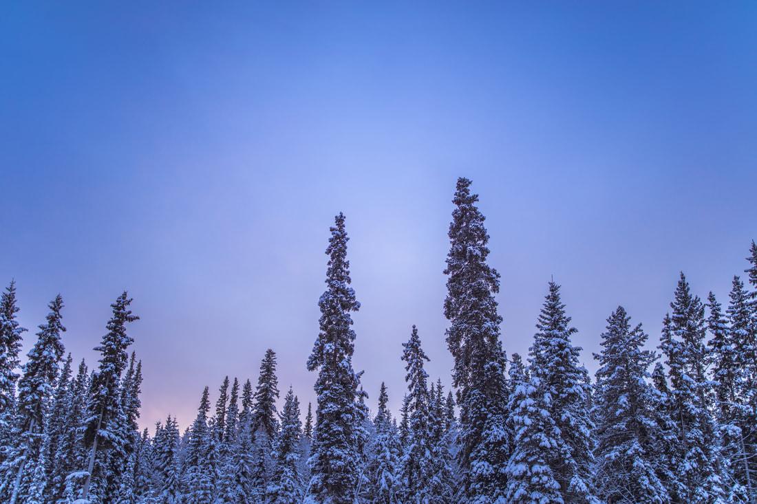 fairbanks-alaska-60_orig.jpg