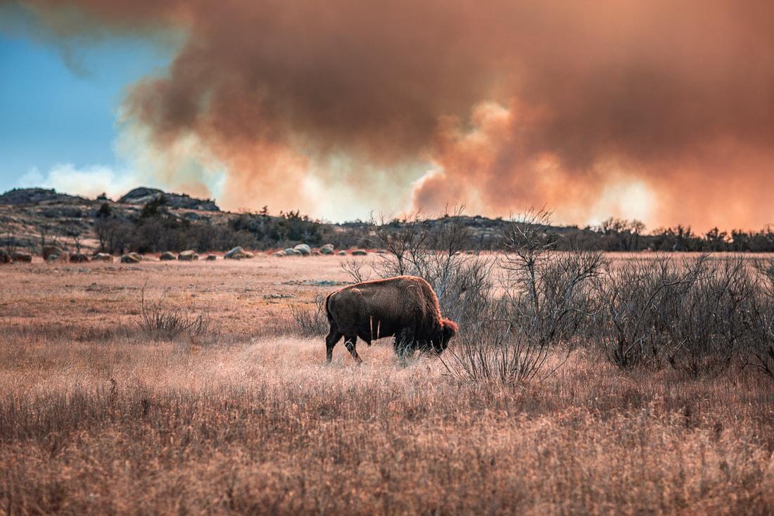wichita-mountains-wildlife-refuge-fb-2812_orig.jpg