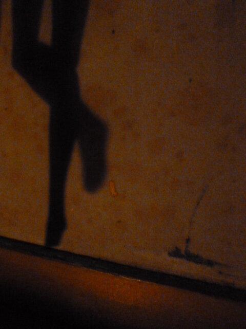 dollhouse-new-shadow-2.jpg