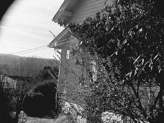 SUNP0019-neighbors.jpg