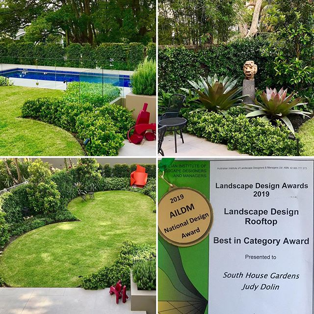 Also thrilled to win Gold and Best in Category for my Rooftop design in Paddington. So great to be recognised at the AILDM National Awards on Saturday. And so great to work with lovely clients and @batesgardengram @alpine_nurseries and #zacksmithconstructions #landscapedesign #landscapedesigner #sydney #aildm