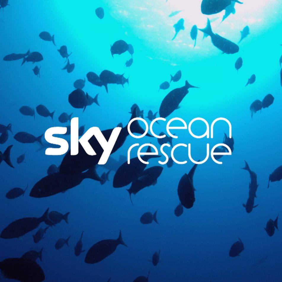 Sky-Ocean-Rescue_Thumb-952x952.jpg