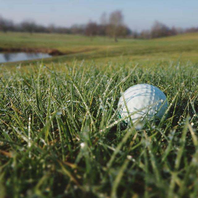 NaturligtvisGCC-golf.png