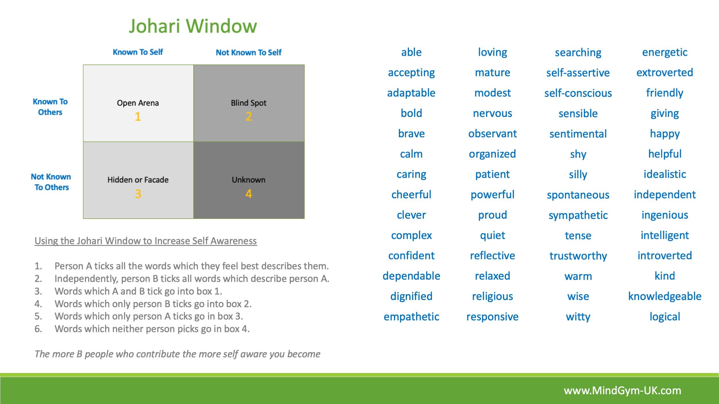 Mind Gym. Johari Window