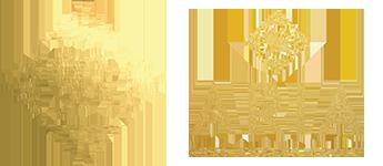 Aria-Logo-New-b.png