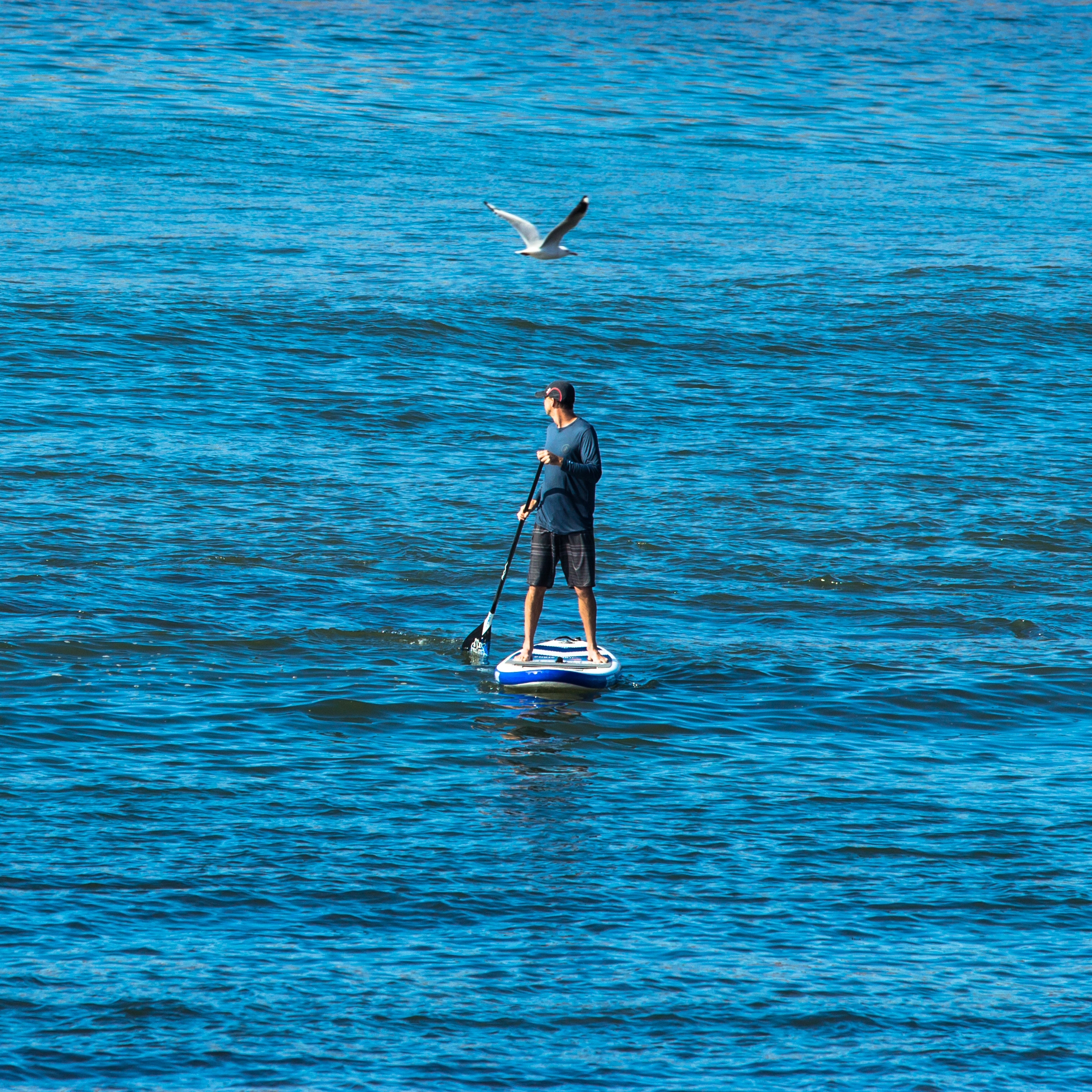 Watersports - Surf the Atlantic Ocean, paddleboard in the Barnegat/Manahawkin Bays, rent a crabbing boat, waverunner or pontoon boat with the family.