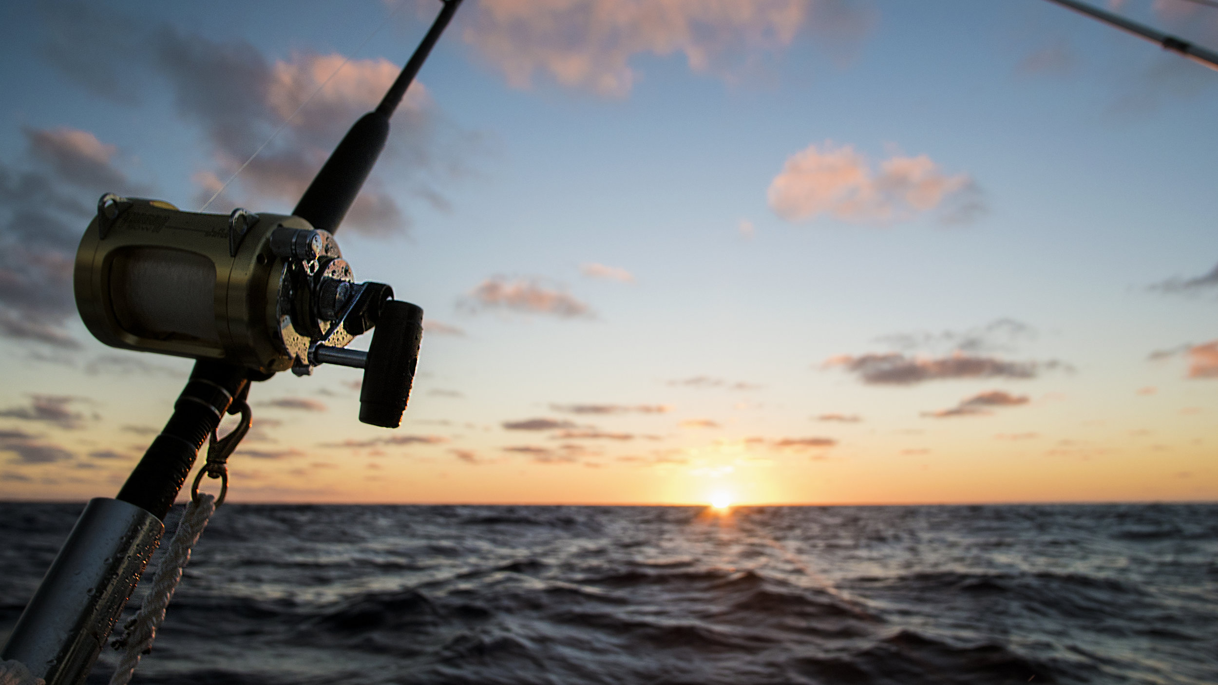 Fishing & crabbing - Long Beach Island is a pristine environment for both fishing & crabbing. Grab a pole and fish off the beach, off the bay docks or grab a boat and wait for tight lines!