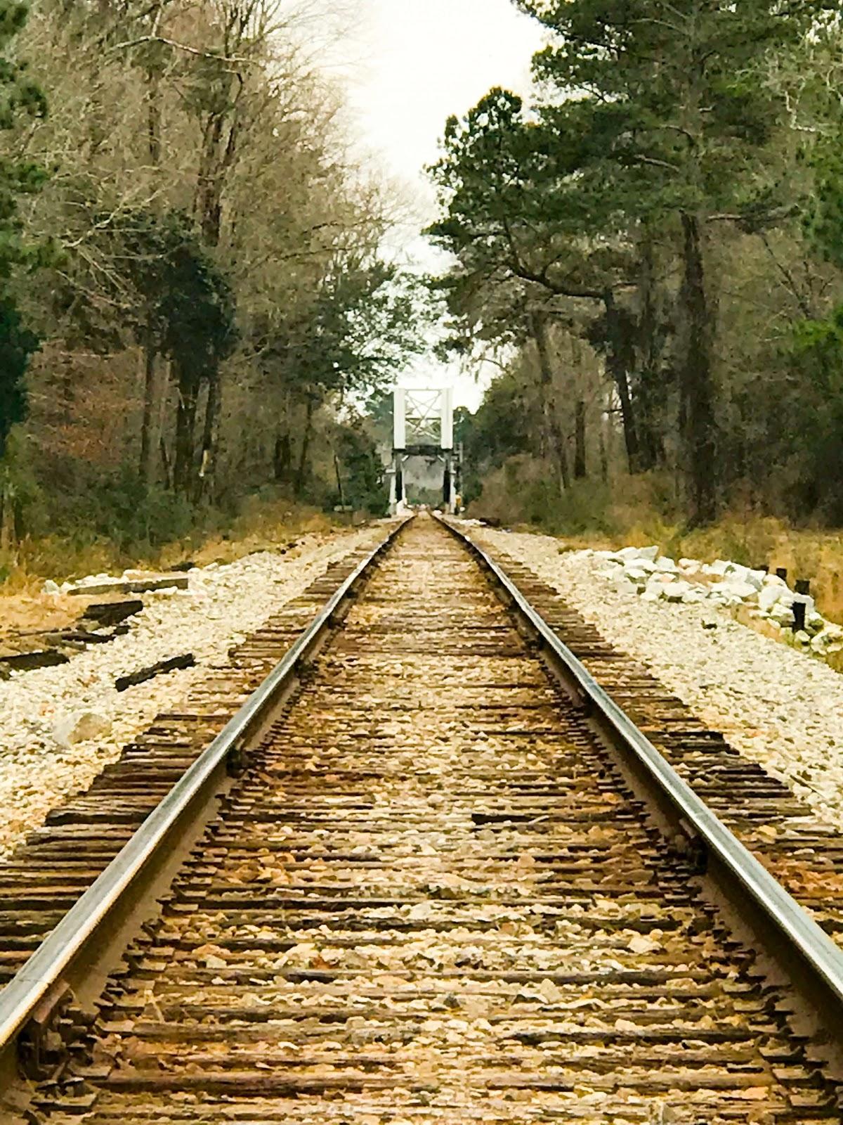 Railroad Strawberry.jpg