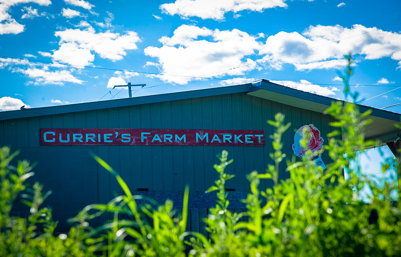 TEMPO Photography - Currie's Market-6167.jpg