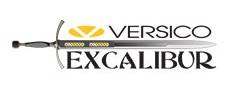 1901-VersicoExcalibur.jpg