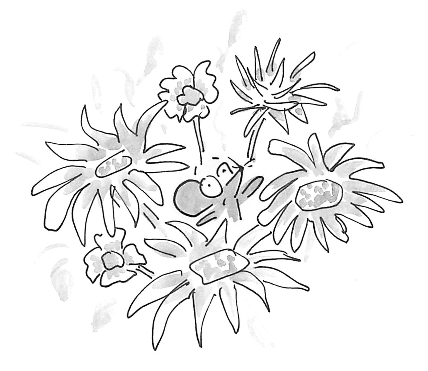 OTBertie in flowers.jpg