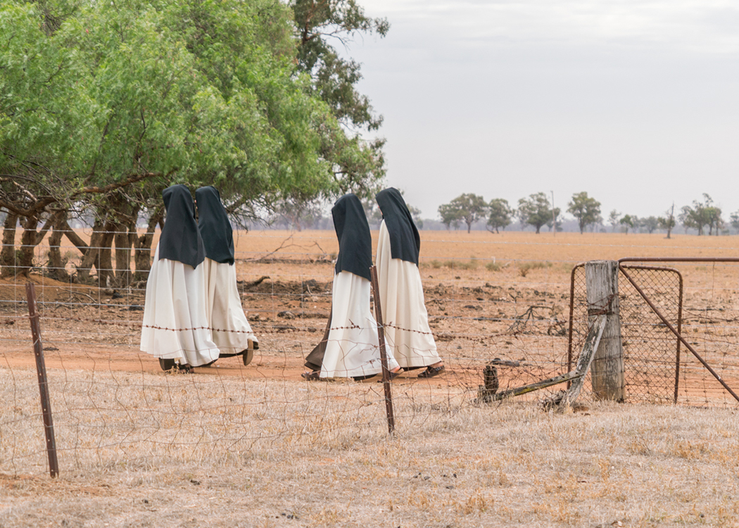 The Nuns walking in the front paddock.   March 2019