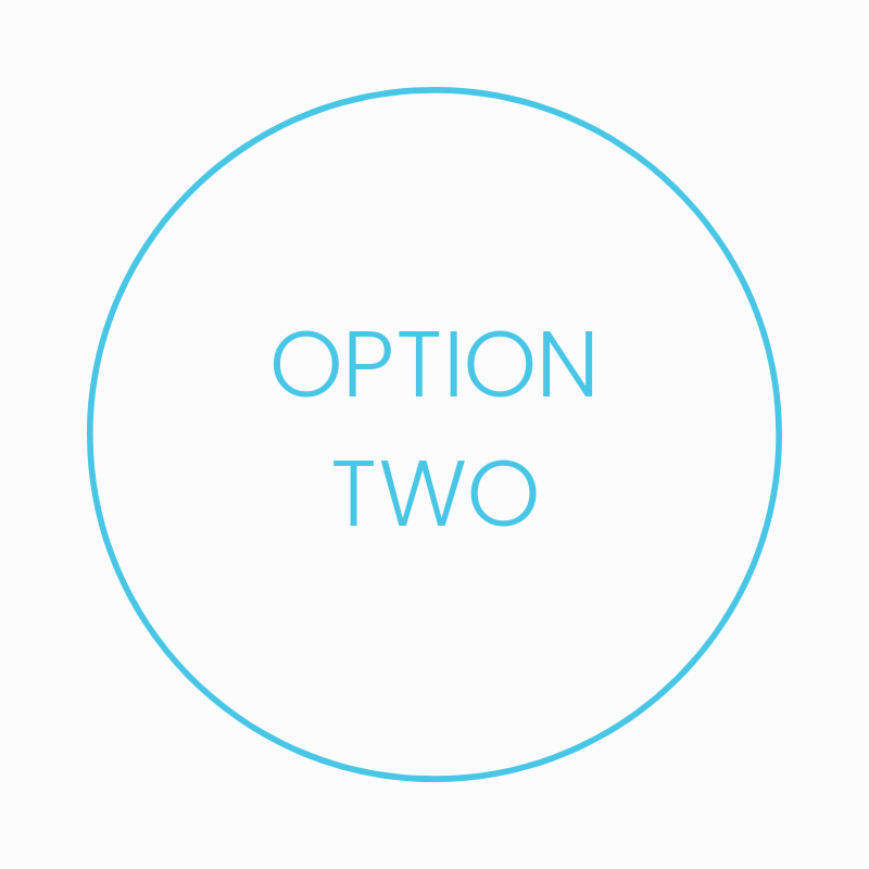 Copy of OPTION 1 (1).png