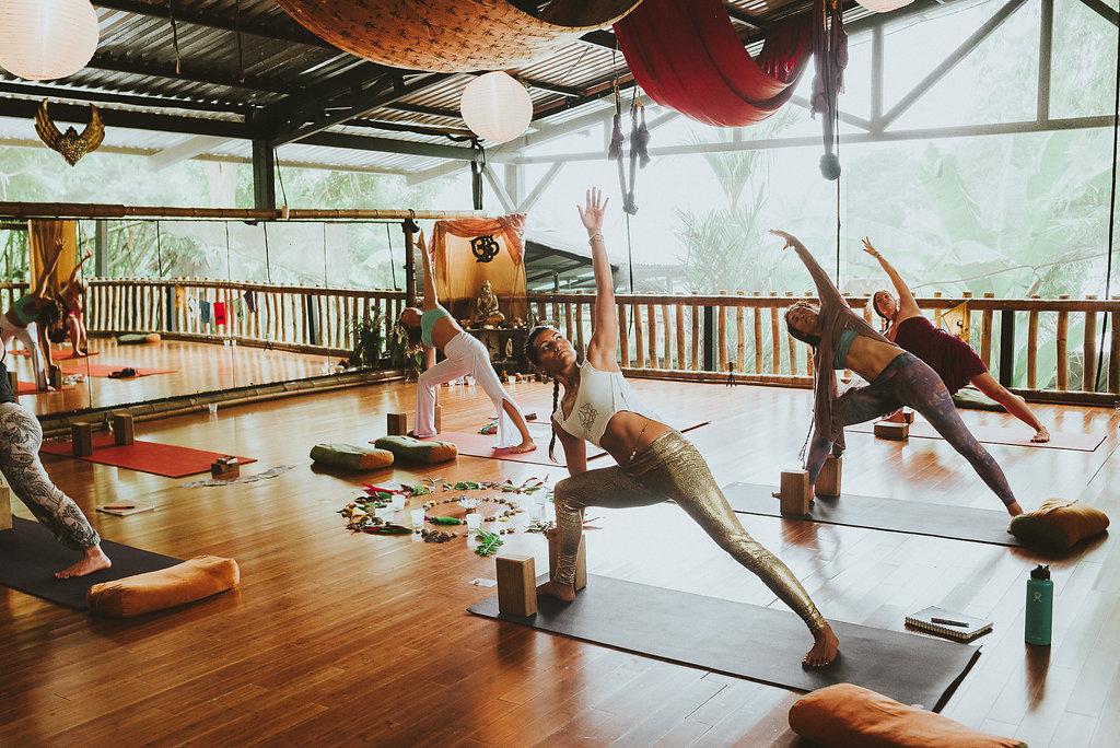danyasa-yoga-warrior.jpg