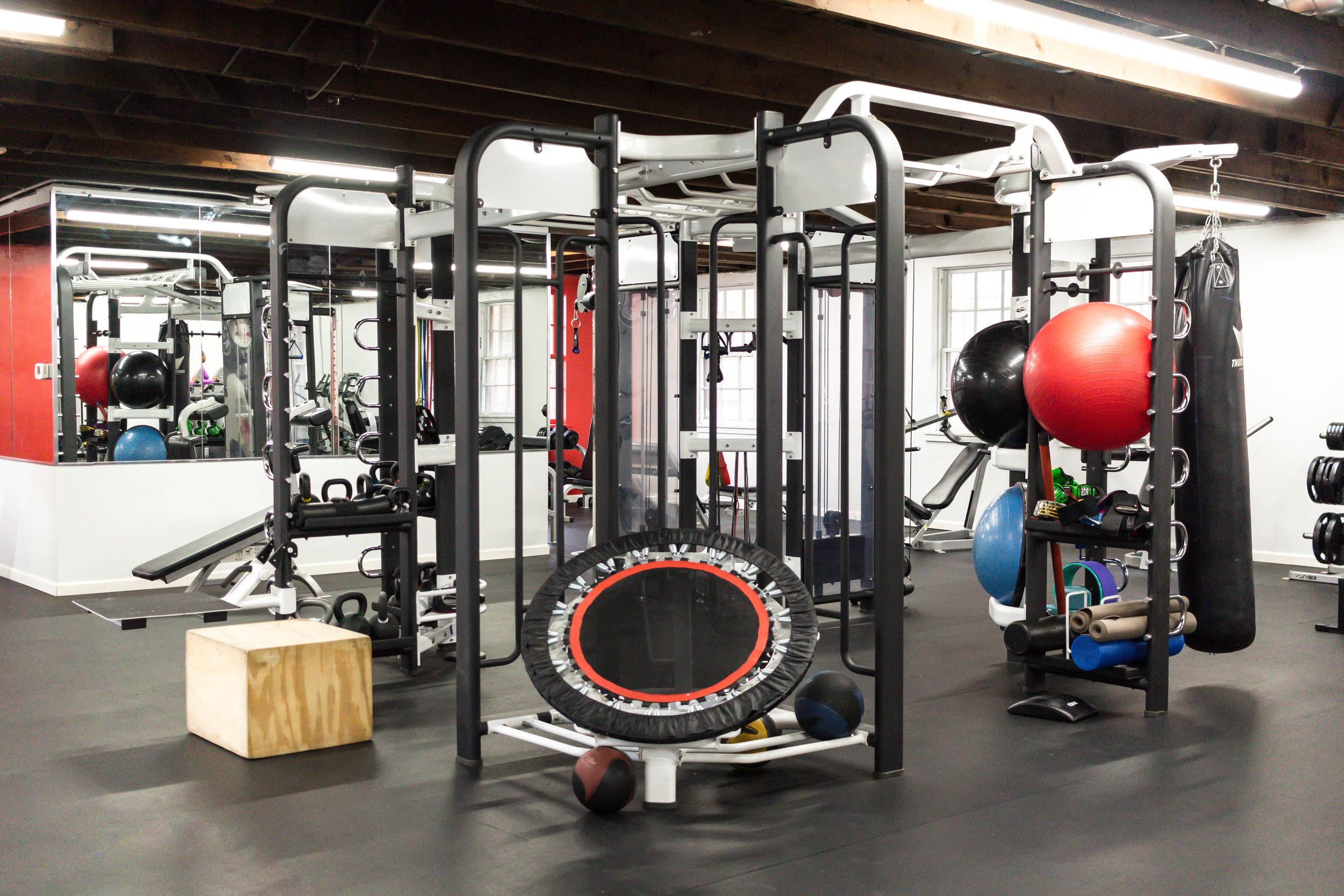 jungle gym-1.jpg