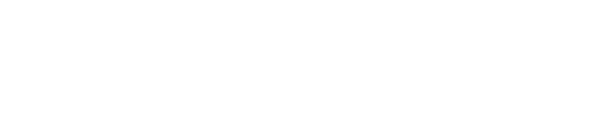 SKIDATA, Inc