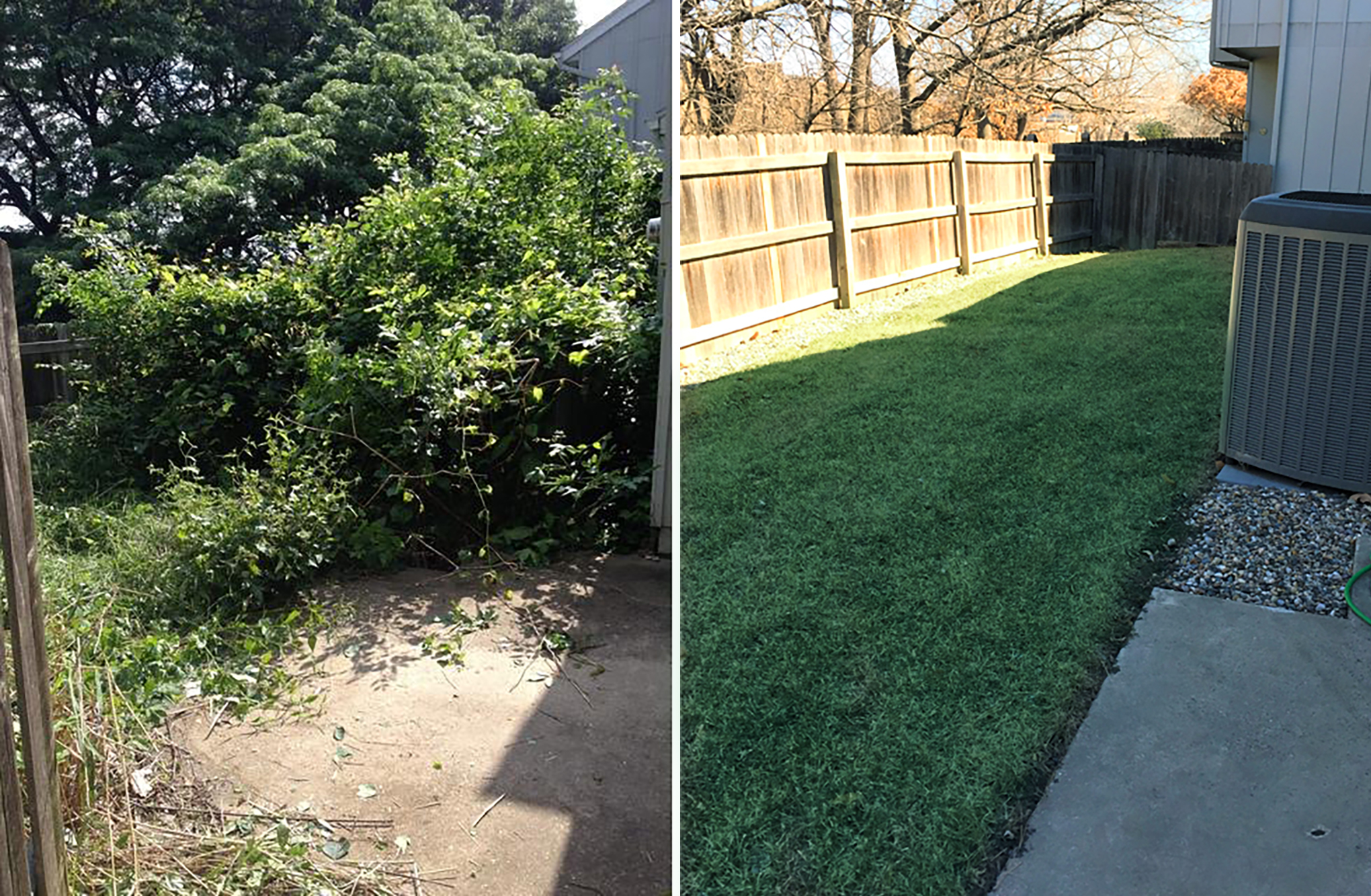 Before and After Sod Lay