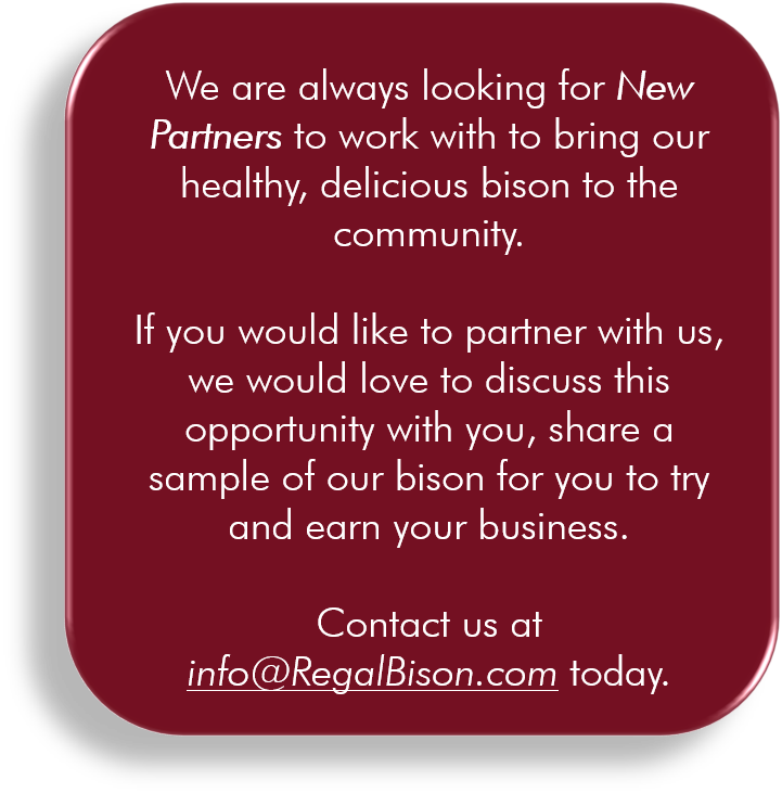 New Partner 2.png