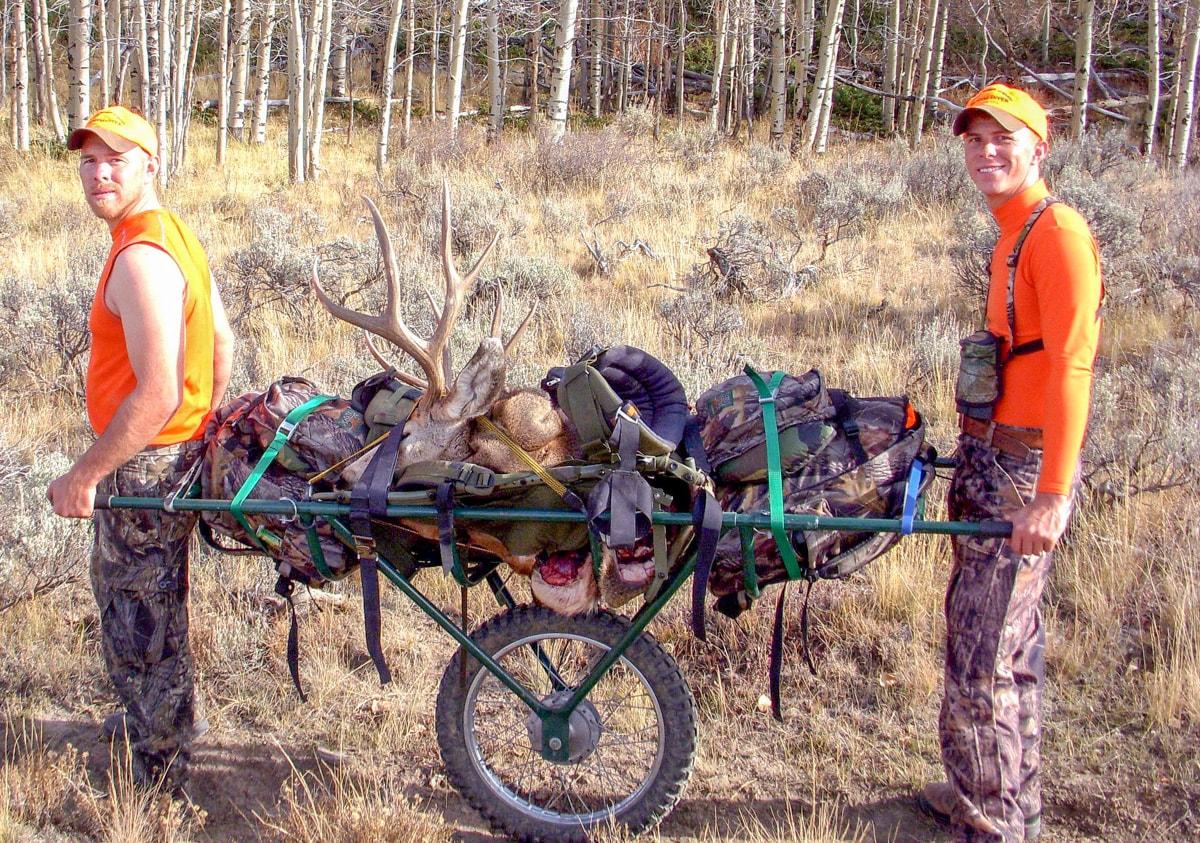 5x5 Bull Elk w/cape 4 Quarters