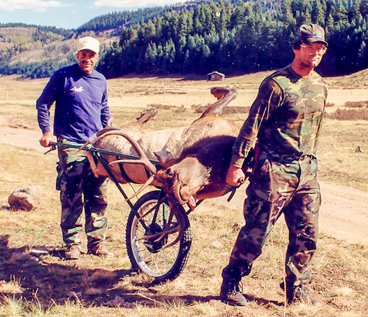 5x5 Bull Elk